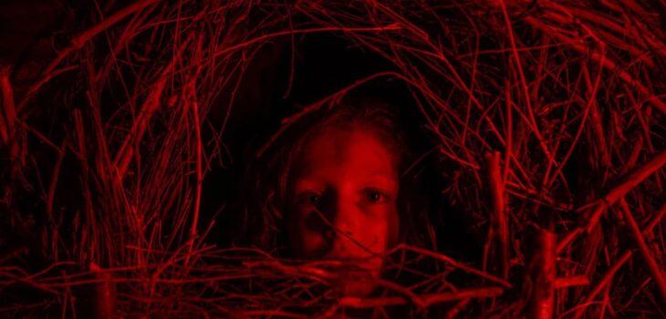 Um Clássico Filme de Terror, novo filme da Netflix