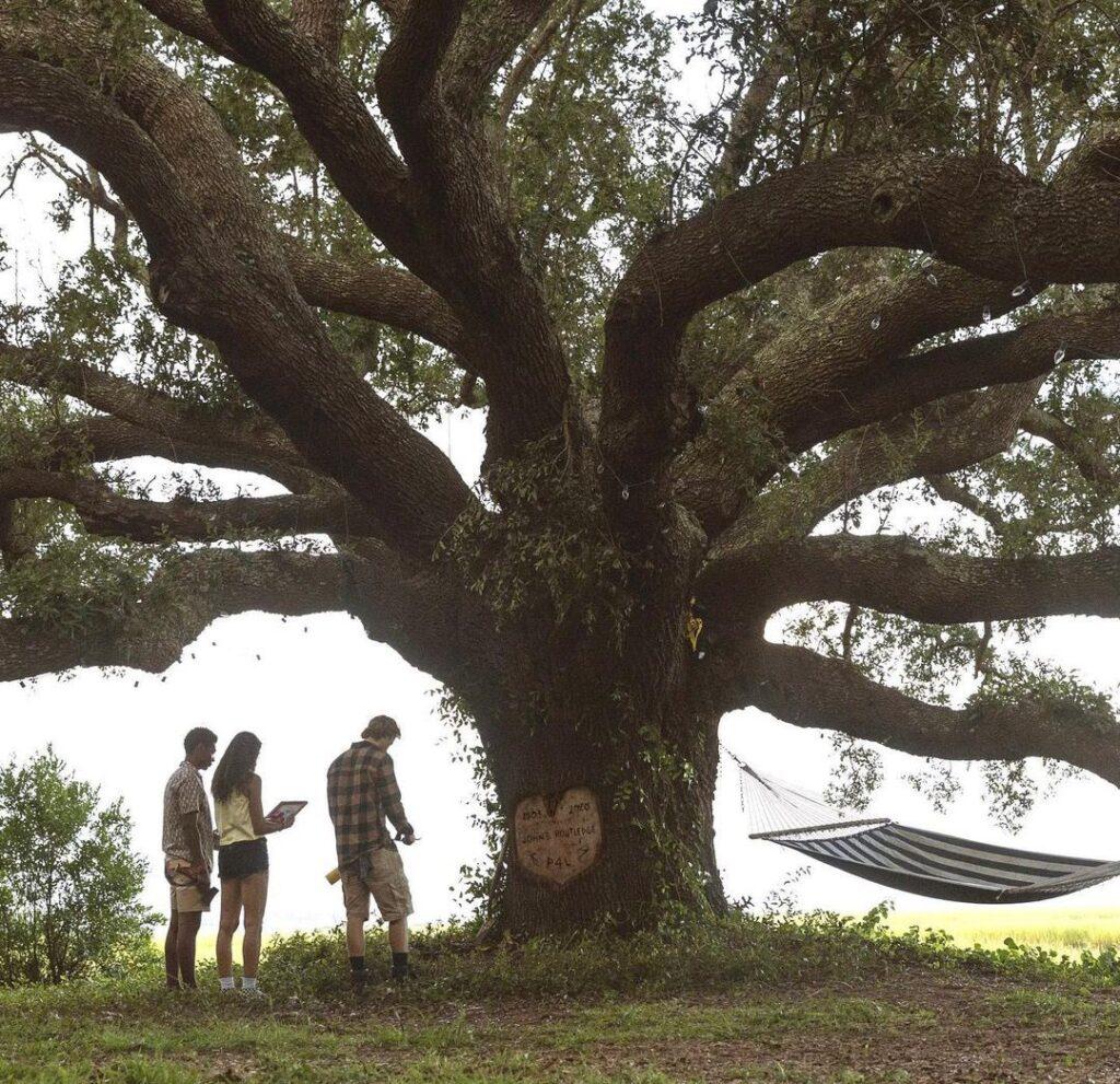 Outer Banks: Netflix divulga teaser e imagens da segunda temporada 3