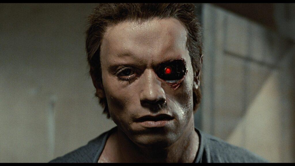 Exterminador do Futuro, Netflix